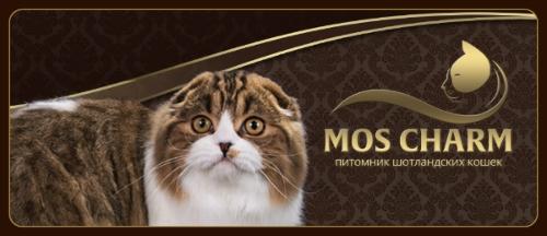 MOS CHARM, питомник шотландских кошек и котят на Москва,  ул. Расковой,  д. 30